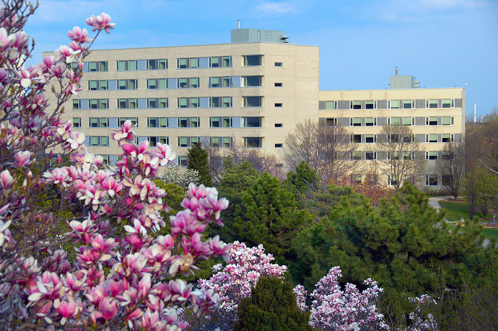 North Residence T Building