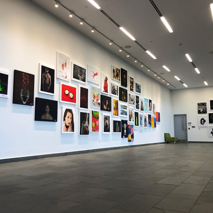 Art gallery with pictures on white walls
