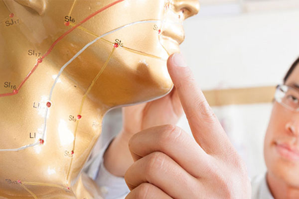 acupuncture points on a mannequin