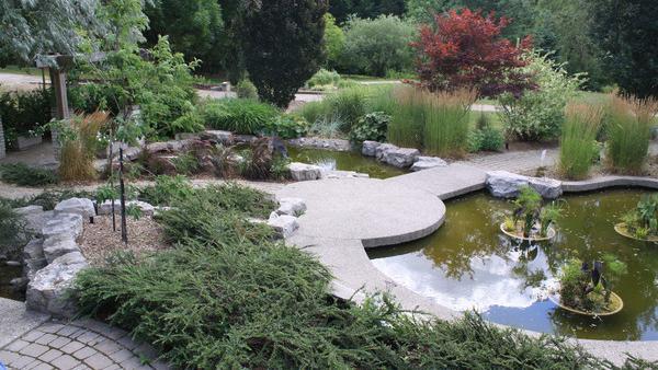 The Humber Arboretum