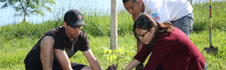 Horticultural Technician Apprenticeship