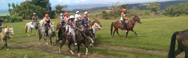 Tourism Management - Travel Industry Services