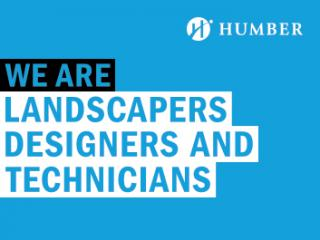 We Are Landscapers Designers and Technicians