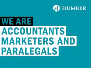We Are Accountants Marketers and Paralegals