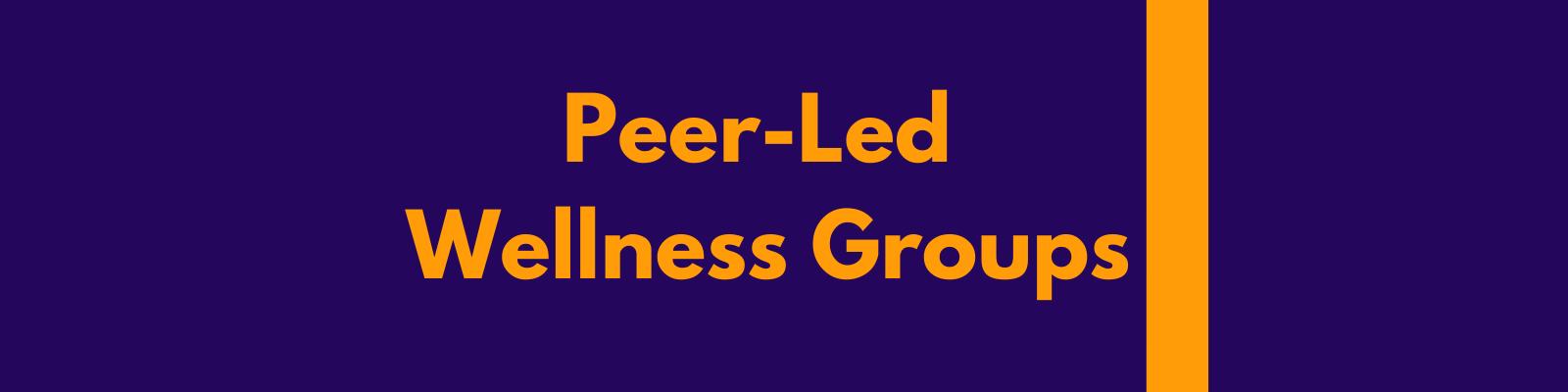 Peer-Led Wellness Groups