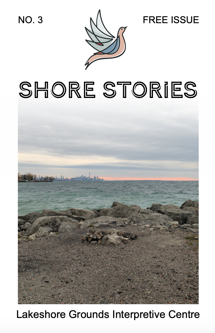 Cover of Shore Stories zine edition No. 3 featuring the shoreline of Lake Ontario with rocky edge, blue water, and skyline of Toronto in distance.
