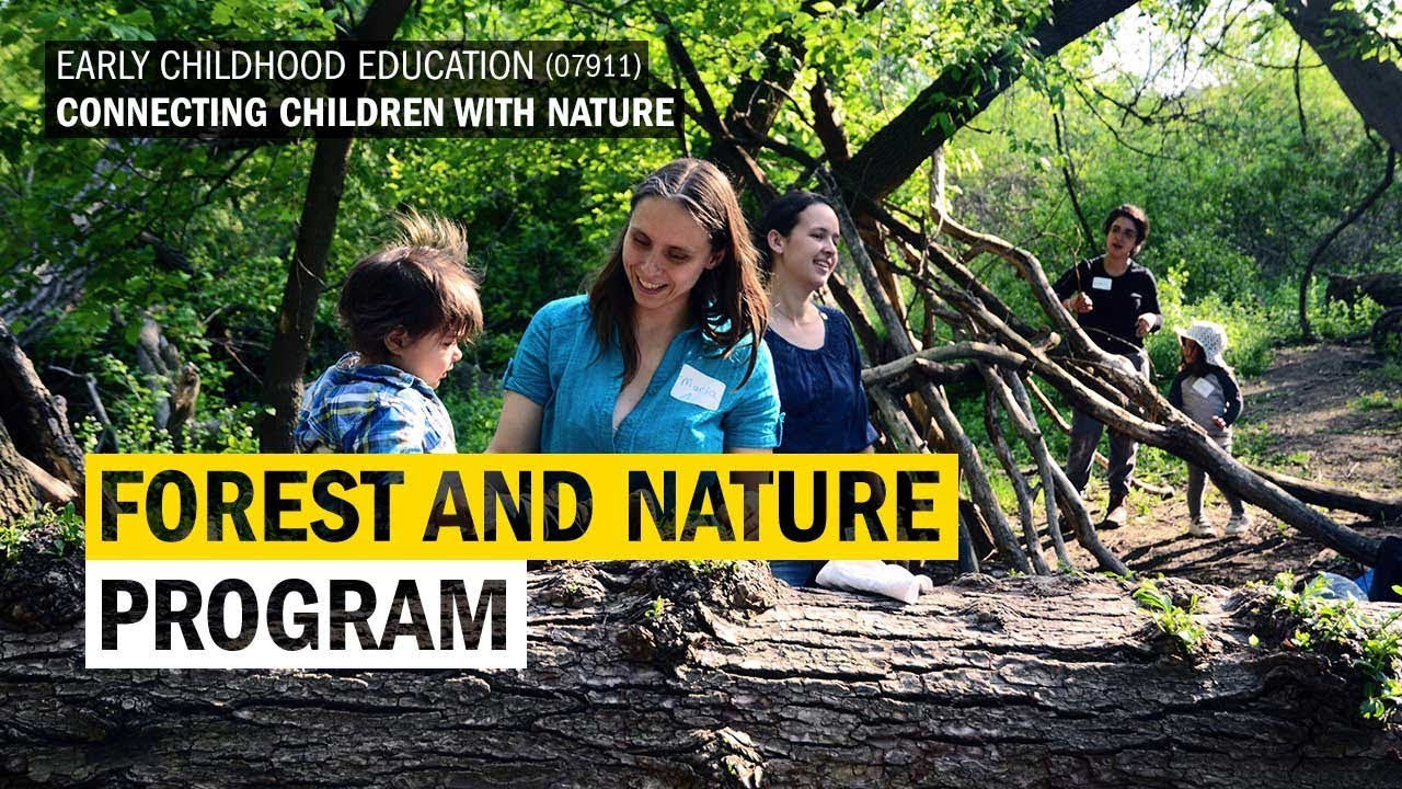 The Forest Nature Program