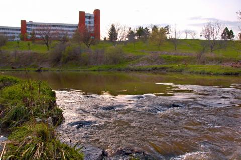 Humber river and campus