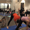 Yoga and Paws for a Cause