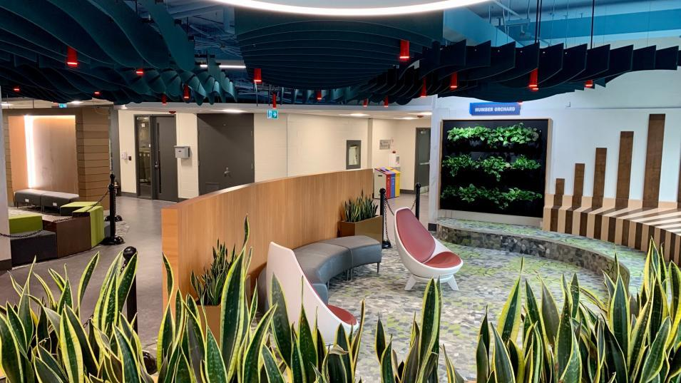 A rendering of North Campus' new open lab's quiet area  which features live plants, earthy tones and ergonomic armchairs