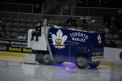 Marlies Game with Humber College and Camp Oochigeas