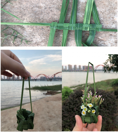 Nancy Hwang's summer school project, a woven grass basket, is shown in three pictures -at the beach, near a road and in progress