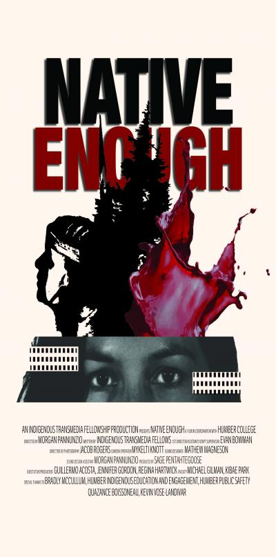 Native Enough poster