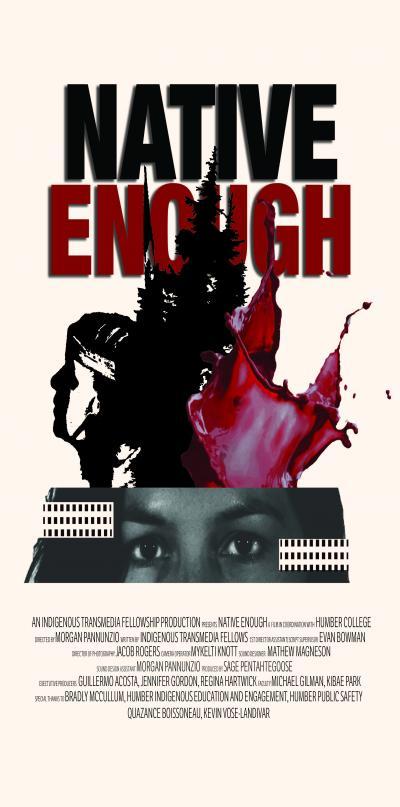 Native Enough poster