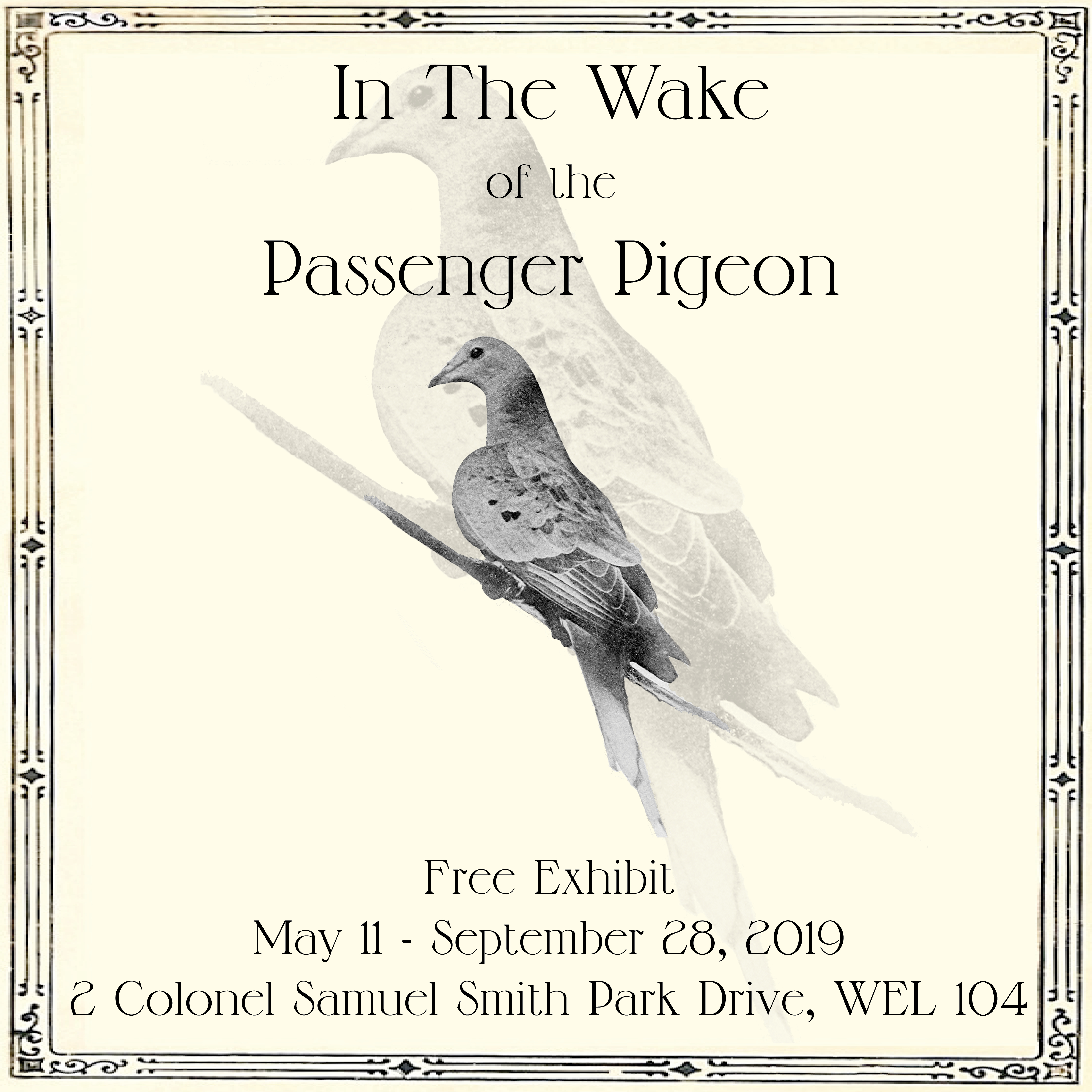 In the Wake of the Passenger Pigeon. Free Exhibit. May 11-September 28, 2019. 2 Colonel Samuel Smith Park Drive, WEL 104.